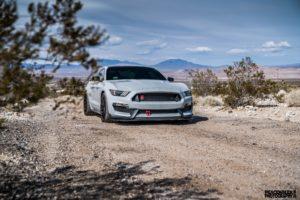 Joe Gatt's Ford Mustang GT350R on Forgeline One Piece Forged Monoblock GTD1 5-Lug Wheels